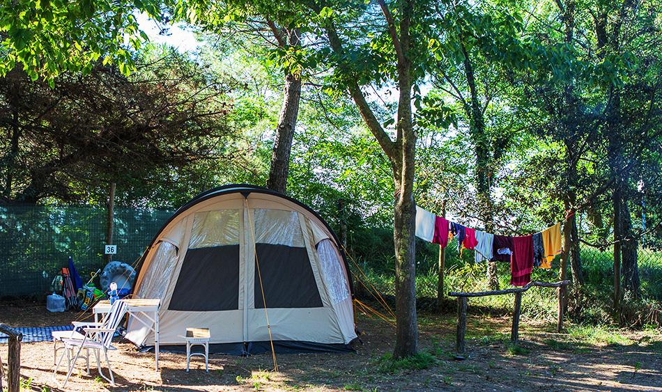 campingalbosco_wohnen_zeltstellplatz_1